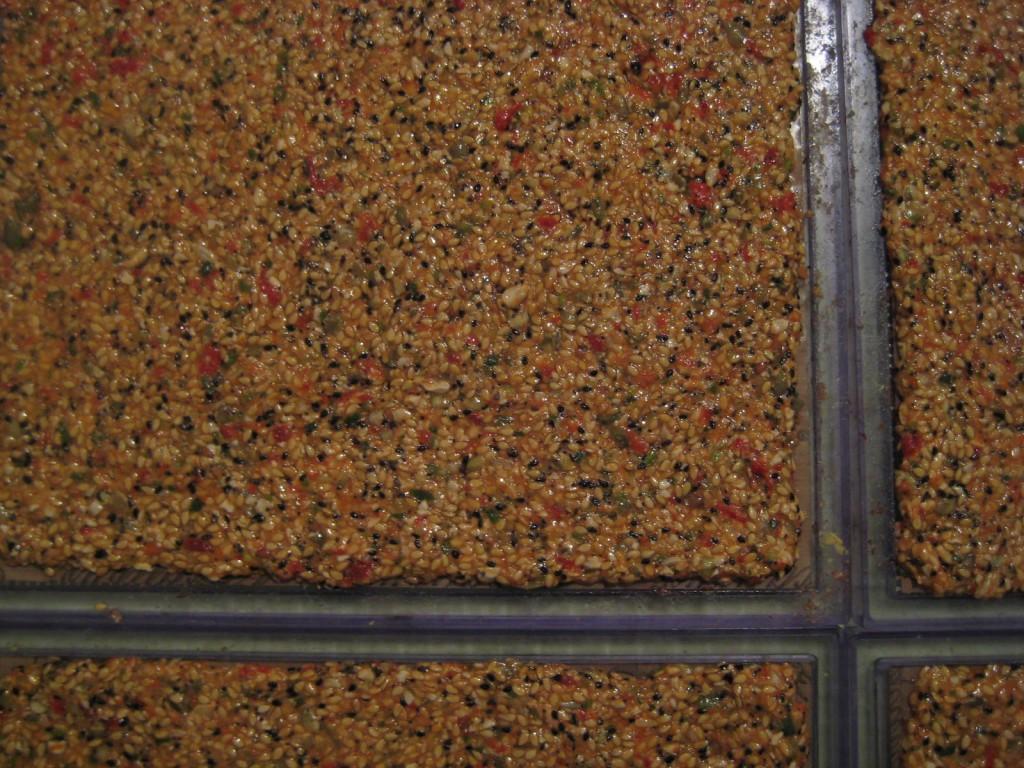 Multi Seed Cracker Recipe on trays