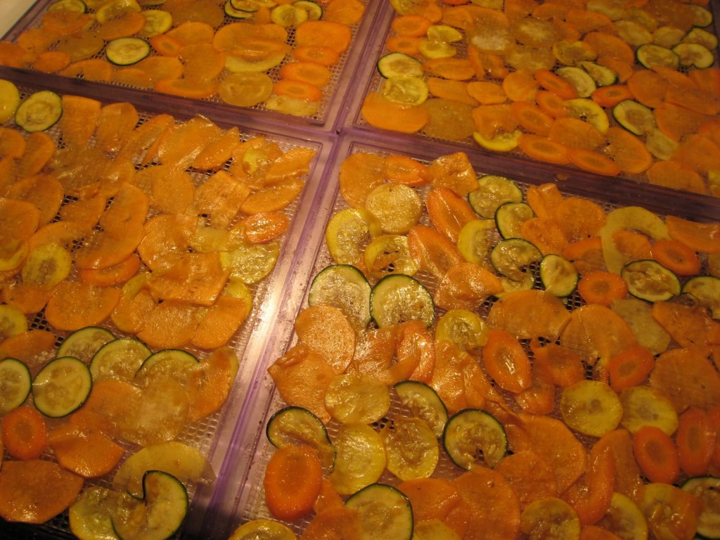 dehydrated veggie chips