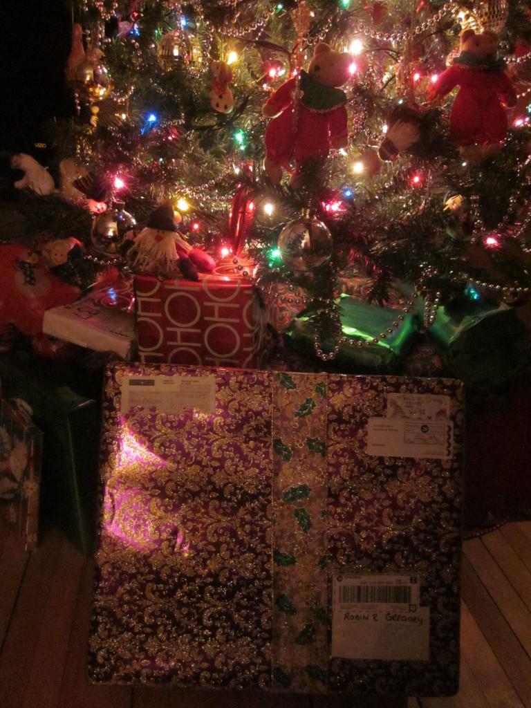 Kaiyas Christmas present