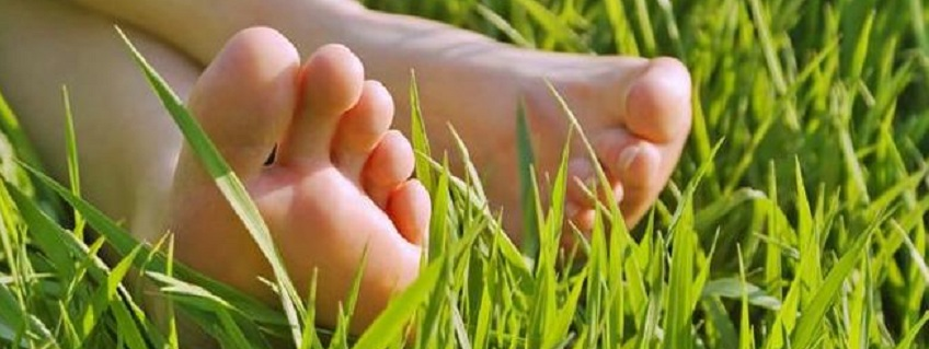Bare Feet - Benefits of Barefoot Training