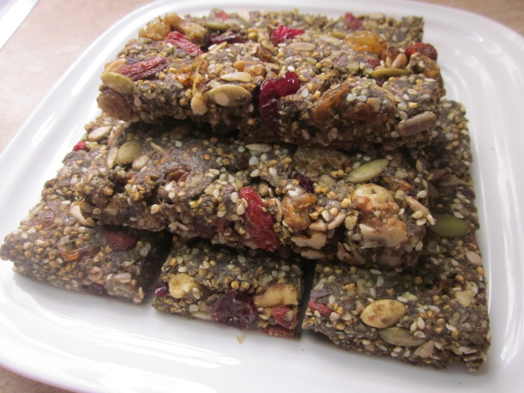 Hemp Protein Fruit Nut and Seed Bar Recipe