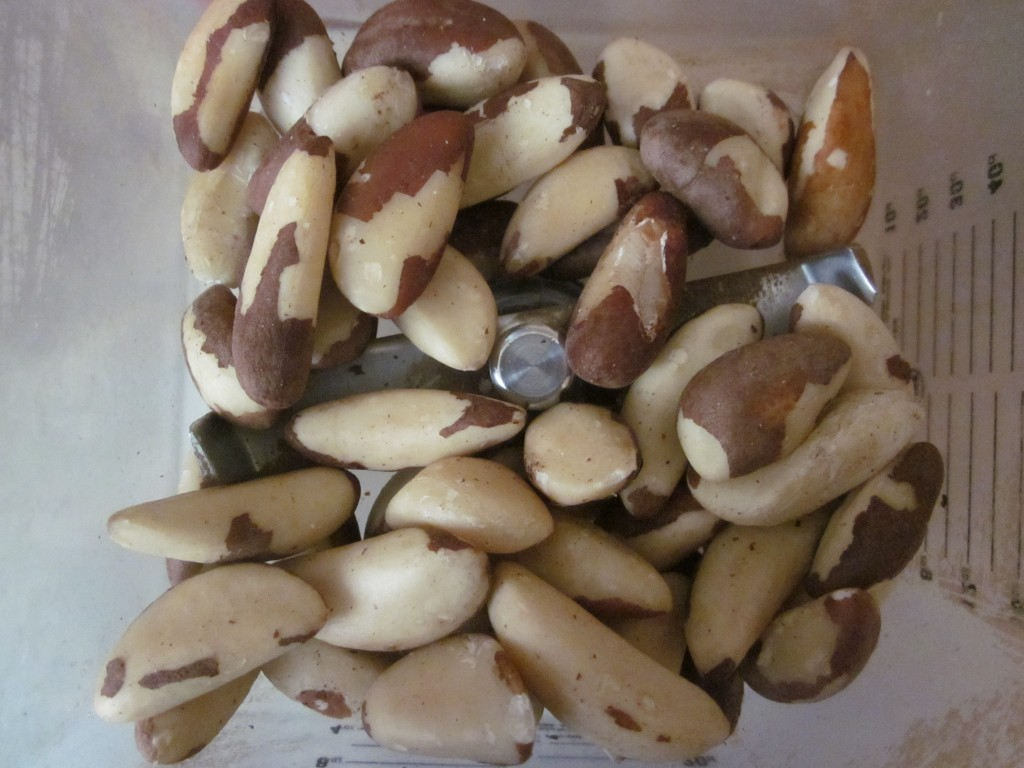 Hemp Protein Fruit Nut and Seed Bar Recipe  Brazil nuts in blender