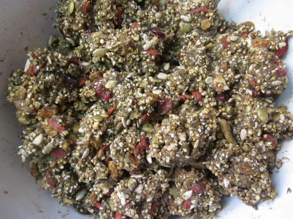 Hemp Protein Fruit Nut and Seed Bar Recipe  ingredients mixed in bowl