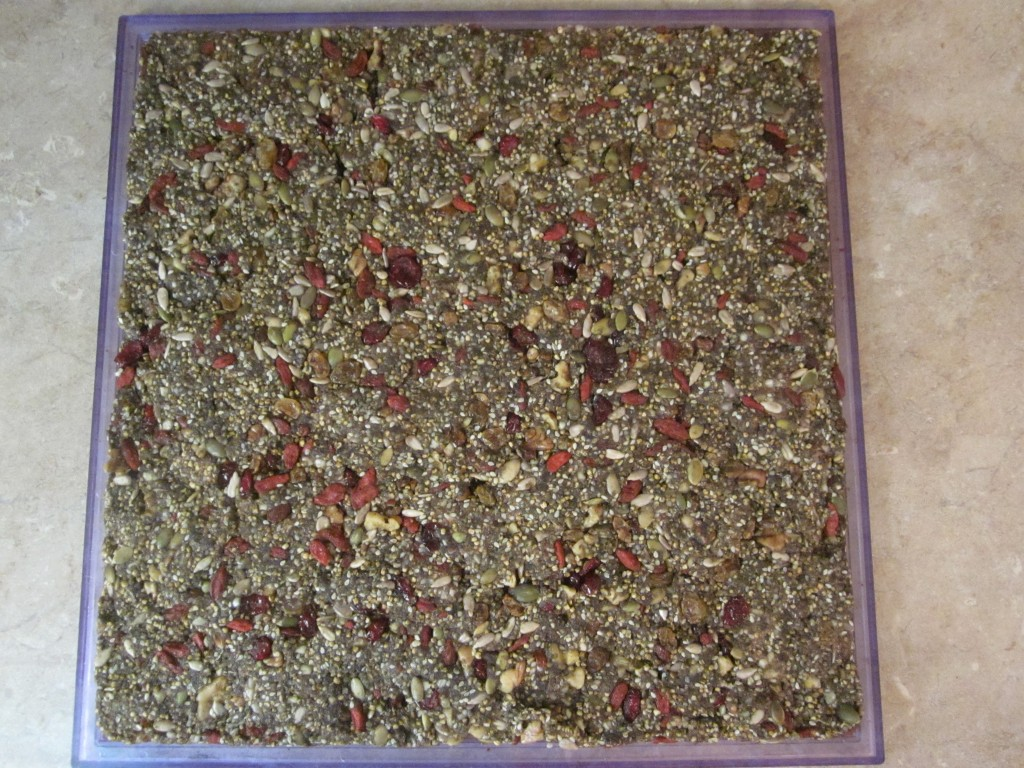 Hemp Protein Fruit Nut and Seed Bar Recipe  spread out