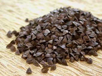 unhulled buckwheat