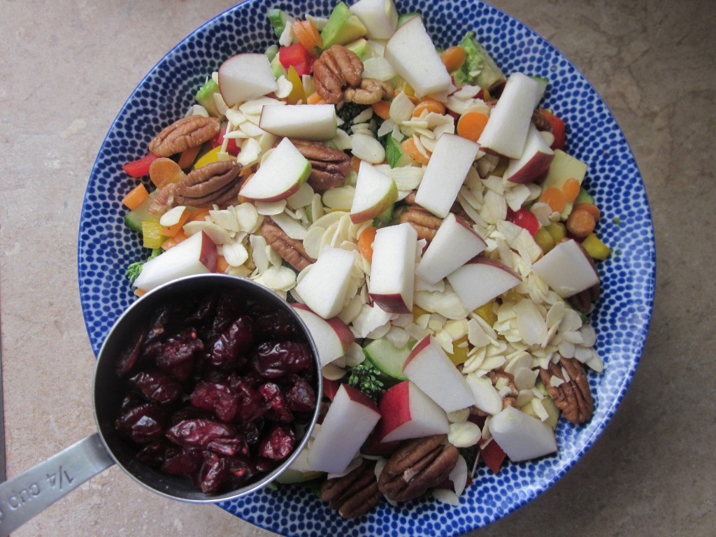Goddess Bowl 2 with Coconut Lime Salad Dressing Recipe - dried cranberries