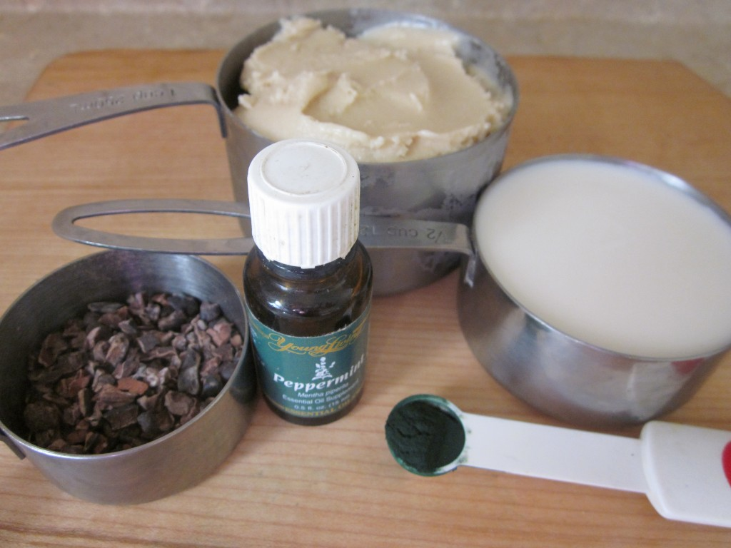Mint Chocolate Chip Shamrock Shake Recipe - ingredients