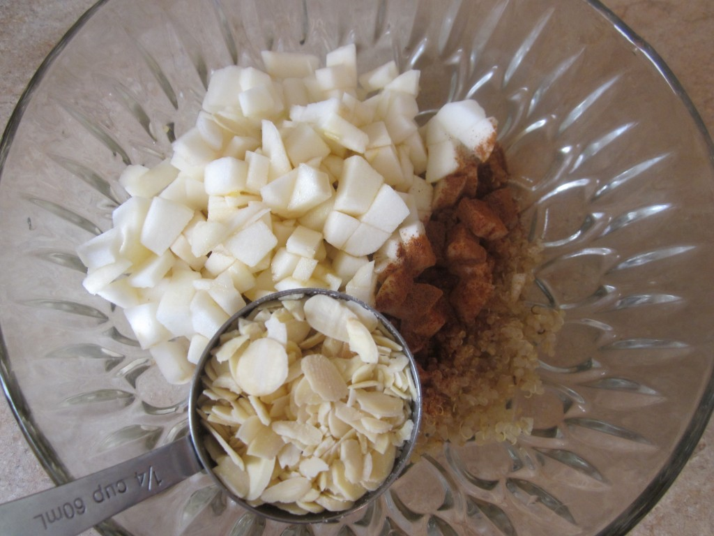Apple Cinnamon Quinoa Porridge Recipe - ingredients in bowl plus sliced almonds