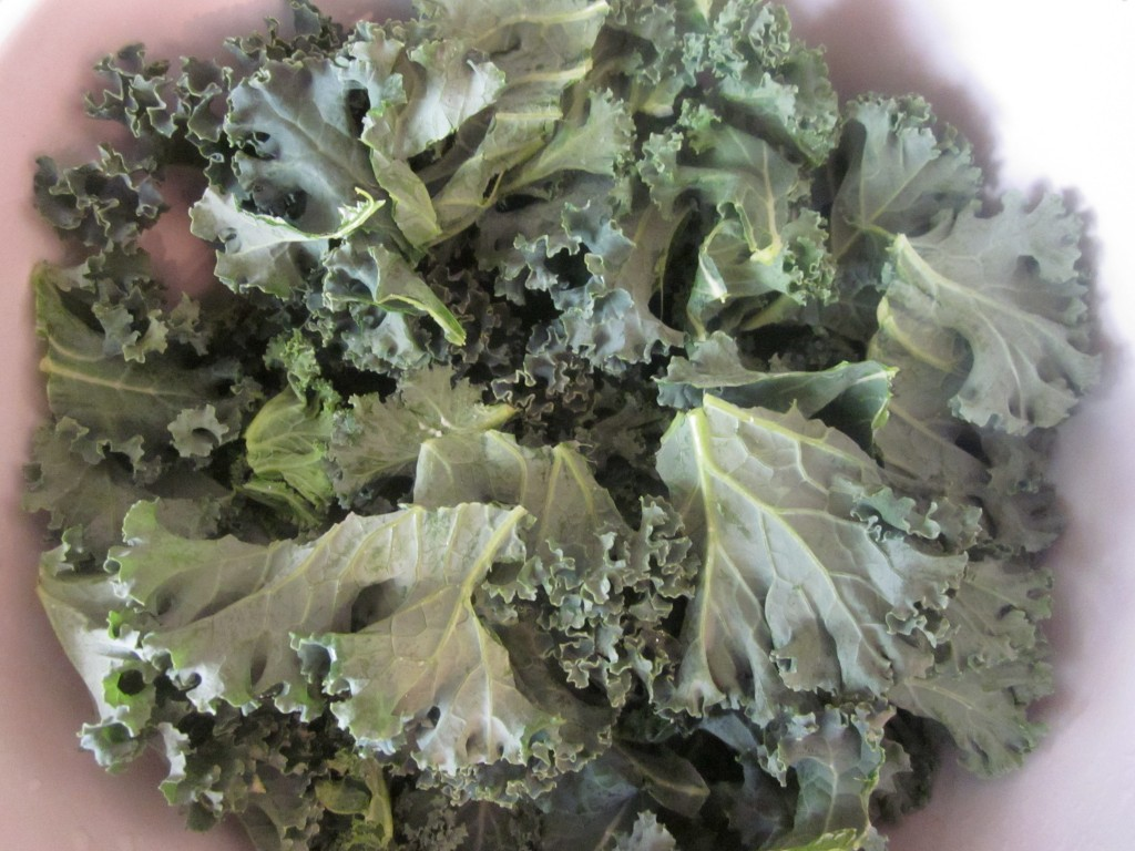 Dill Pickle Kale Chips Recipe - kale in bowl