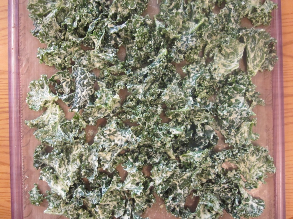 Dill Pickle Kale Chips Recipe on teflex