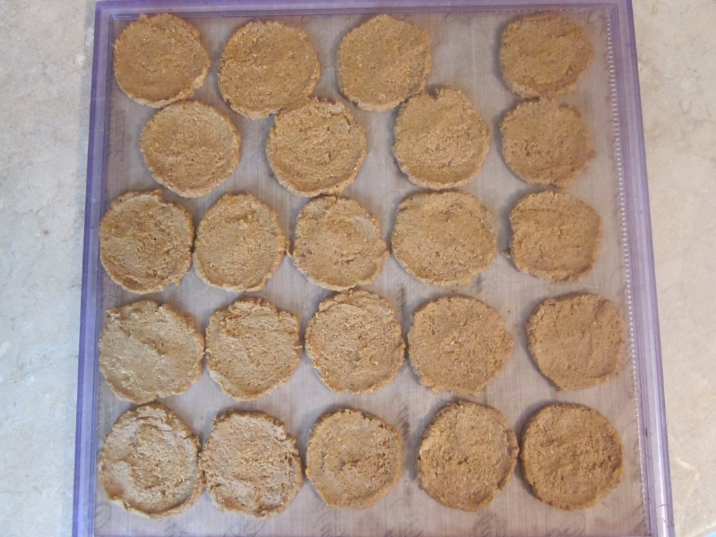 Protein Pumpkin Ginger Cookies Recipe - drop by spoonfuls and flatten
