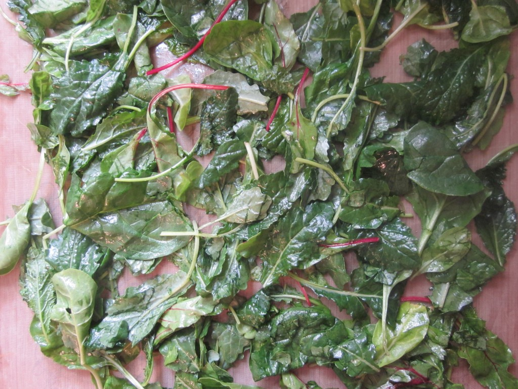 Wilted Southern Greens Recipe - oiled greens