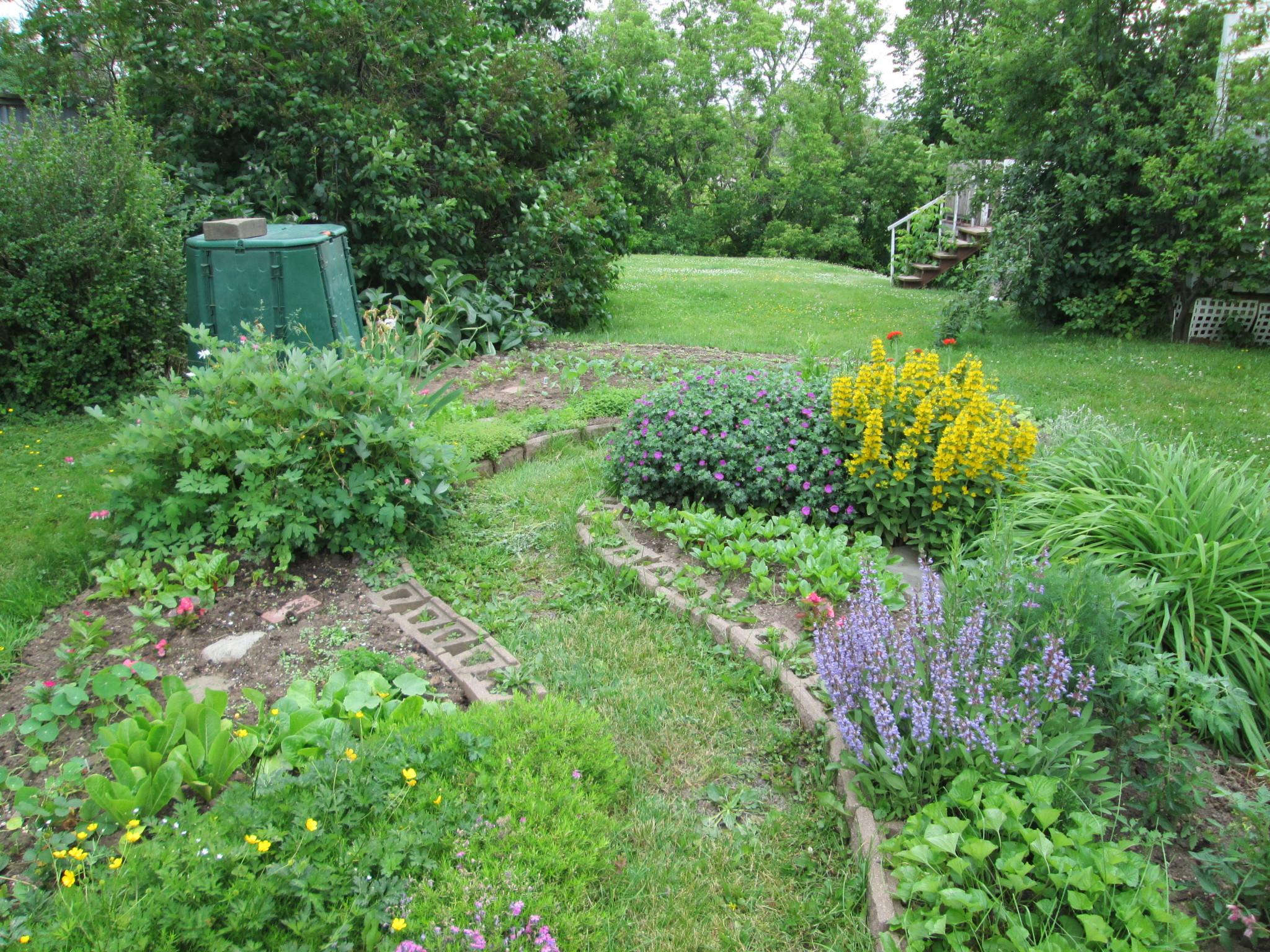 our vegetable garden plot 2013robins key