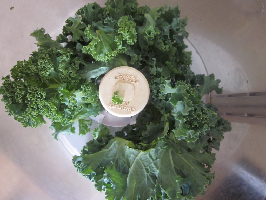 White Beans and Pine Nuts with Arugula and Kale Recipe - kale in processor