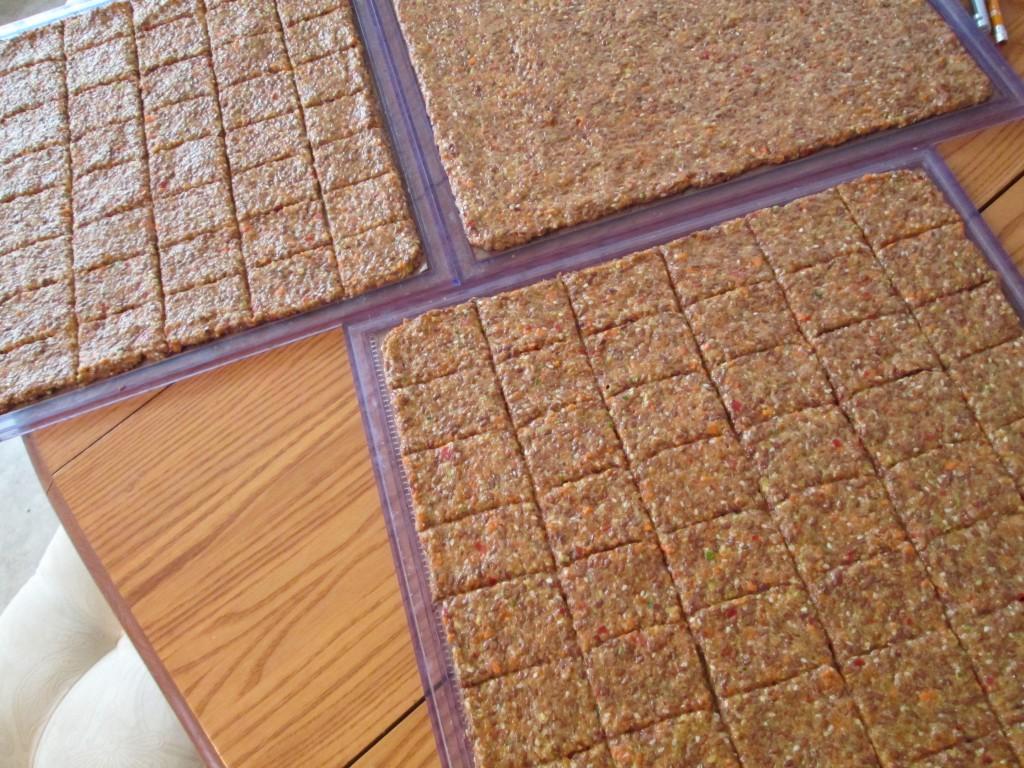 Dragon Flax Crackers Recipe - spread on teflex and score