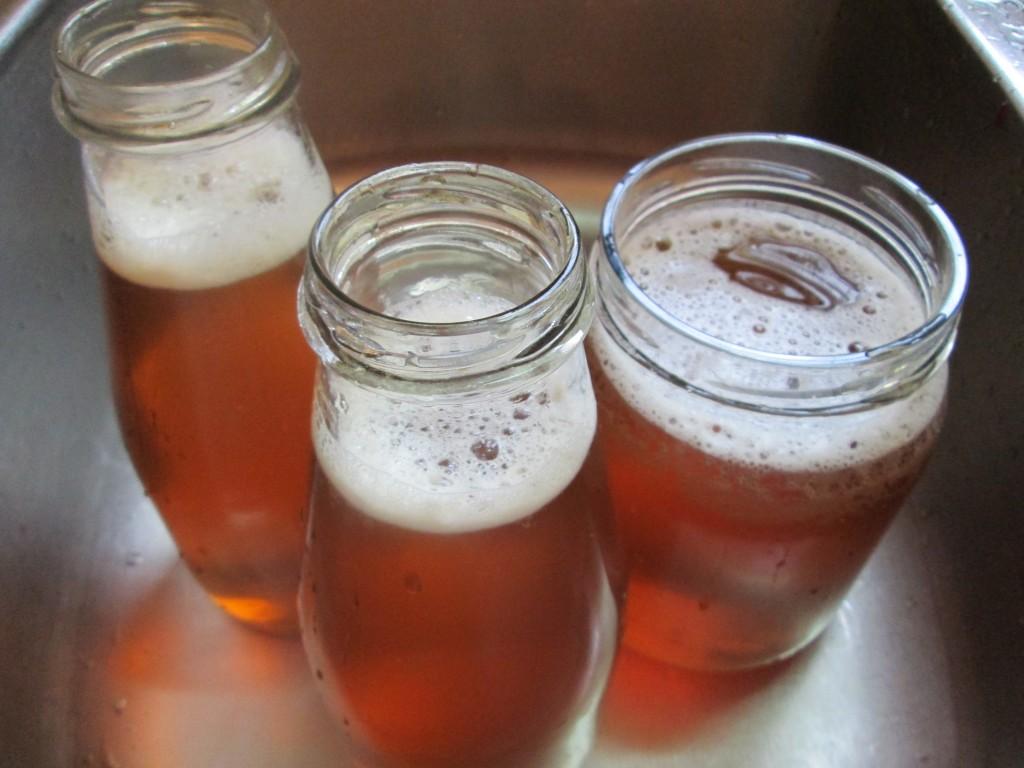 Kombucha Recipe - 8 fill bottles