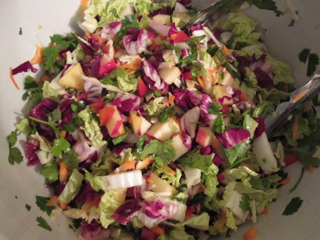 Fireworks Salad Recipe - ingredients mixed