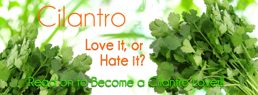 cilantro love or hate