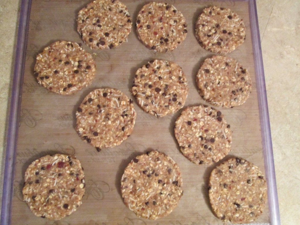 Oatmeal, Coconut Date Cookies Recipe - cookies flattened on teflex