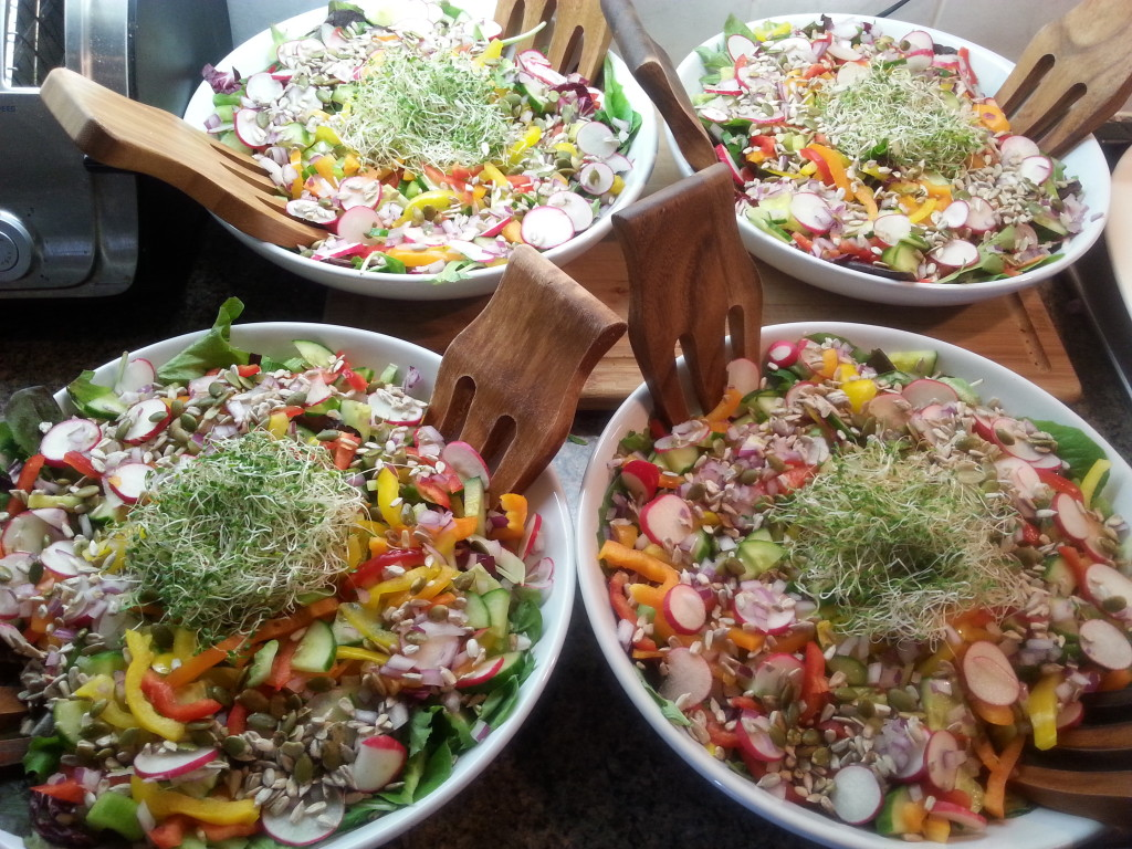 Beautiful salads fromt he Padmani Yoga retreat