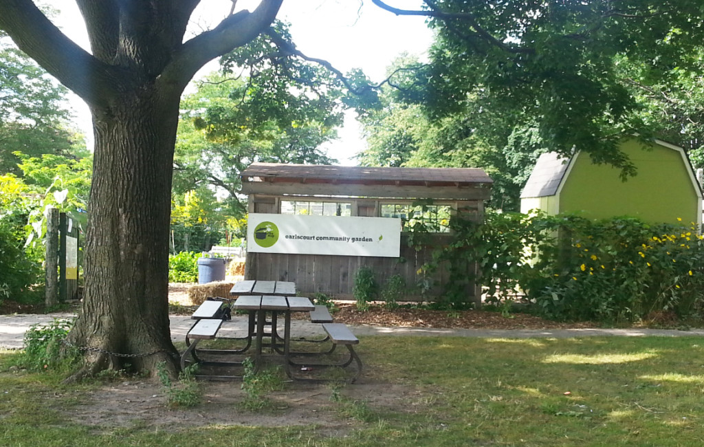 Earlescourt park and community garden project 5
