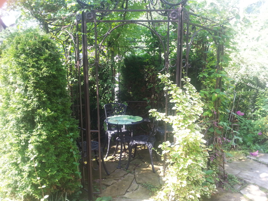 Garden Walk and Minestrone Verde Soup Recipe 3